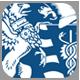 R-ITI programme badge