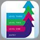IT skills pathway programme badge